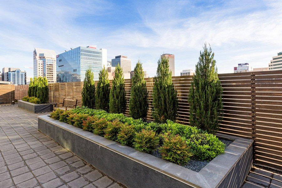 Commercial Garden Design Services Adelaidegarden Art Design